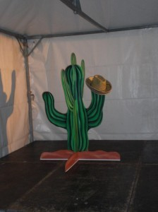 Cactus werpen