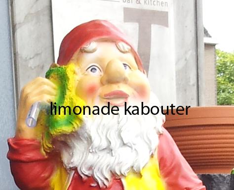 Limonade kabouter leuk voor elk event