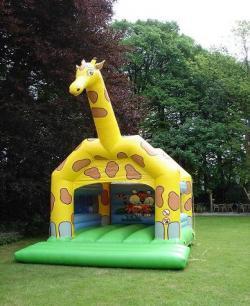 Giraffe luchtkussen € 125,-