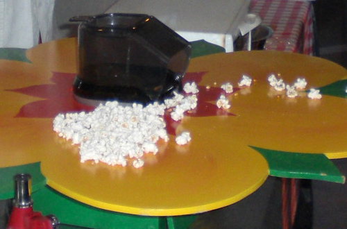 Popcorn bloem € 65.-